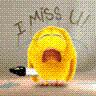 miss_seu