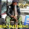 bacbmcs